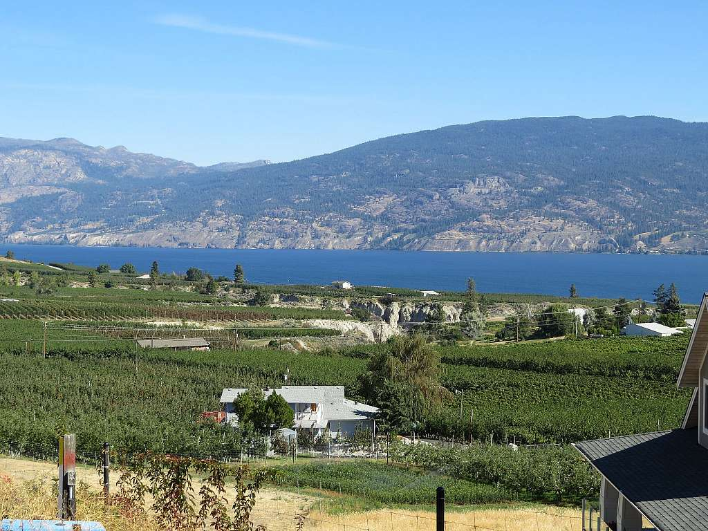 Weinanbau in Summerland