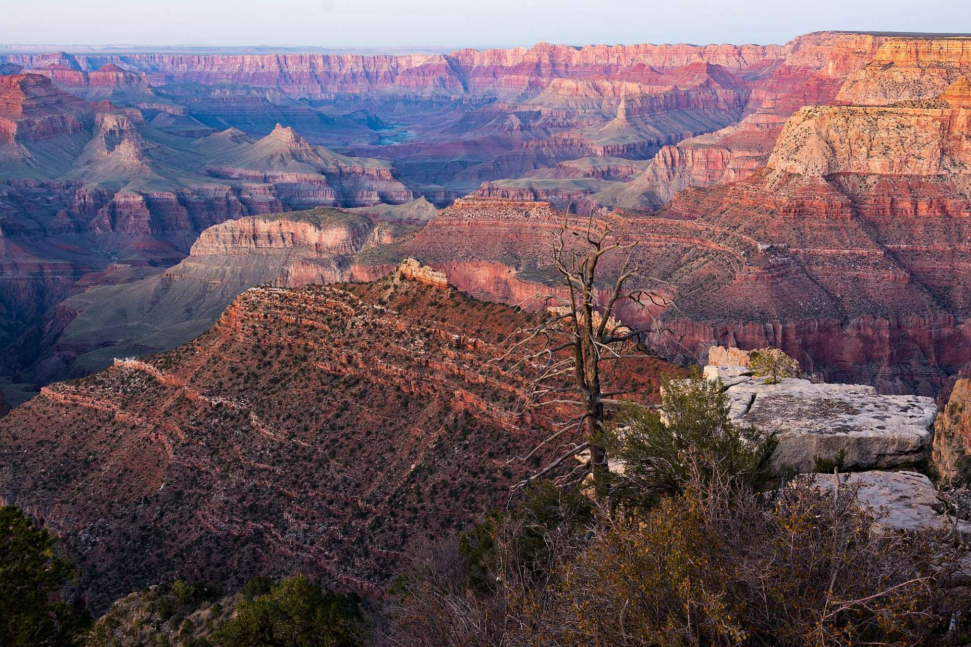 Der Südrand des Grand Canyon: South Rim