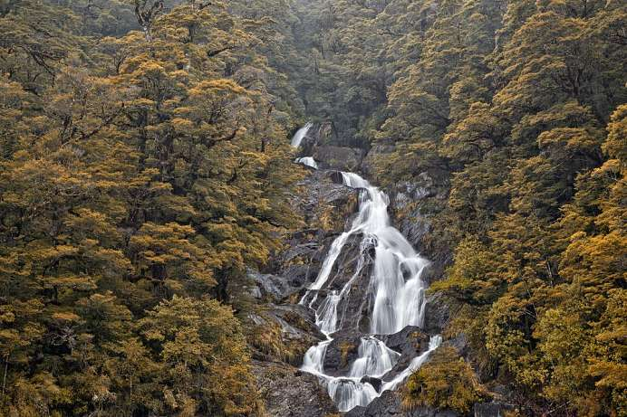 Am Haast Pass: Fantail River