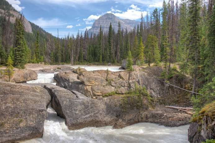 Kicking Horse River: Yoho National Park