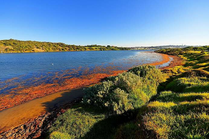 Hopkins River bei Warrnambool