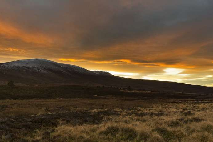 Overlooking Scotland's whisky country: Ben Rinnes