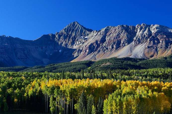 Uncompahgre Forest und Peak