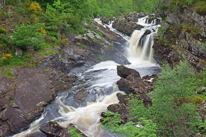 Salmon hike in August and September: Rogie Falls
