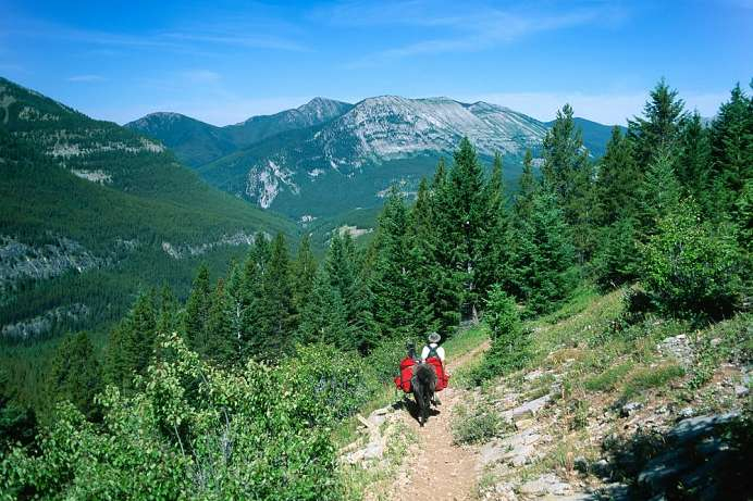 Am Rand der Bob Marshall Wilderness: Pyramid Trail