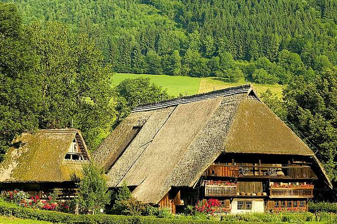 Black Forest Open Air Museum: Vogtsbauernhof