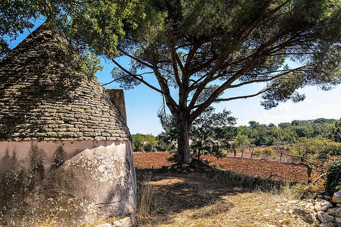 Picturebook Puglia: between Valle d'Itria and the coast