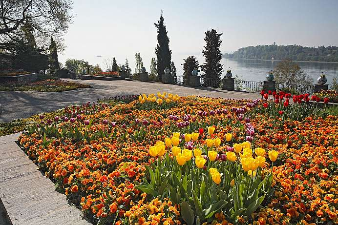 Tropical floral splendor: Mainau in Lake Constance