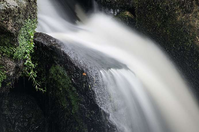 Magical Ensemble: Cantonteign Falls