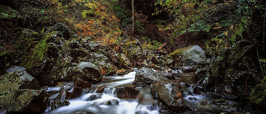 Clear streams, enchanted forests: Serra da Estrela
