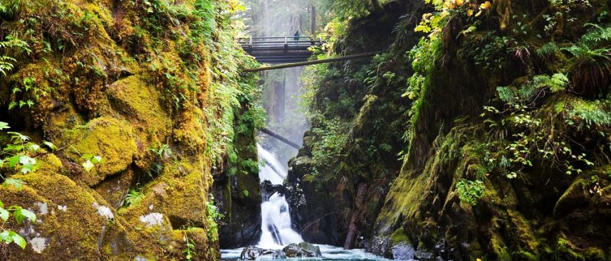 Sol Duc Waterfal im Olympic National Park