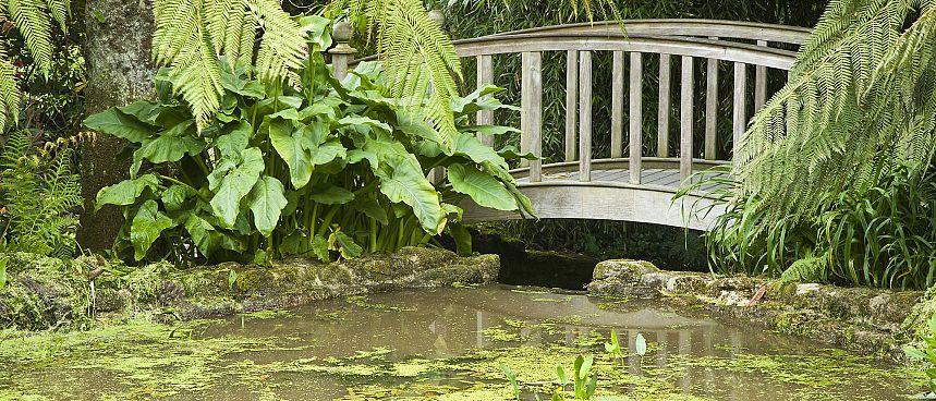 Gärten In Cornwall cornwall raue küste malerische strände und subtropische gärten