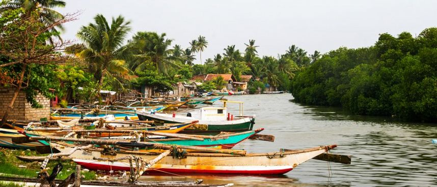 Traditionelle Boote: Negombo