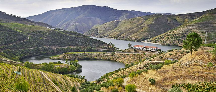 Ancient wine-making region: Douro Valley